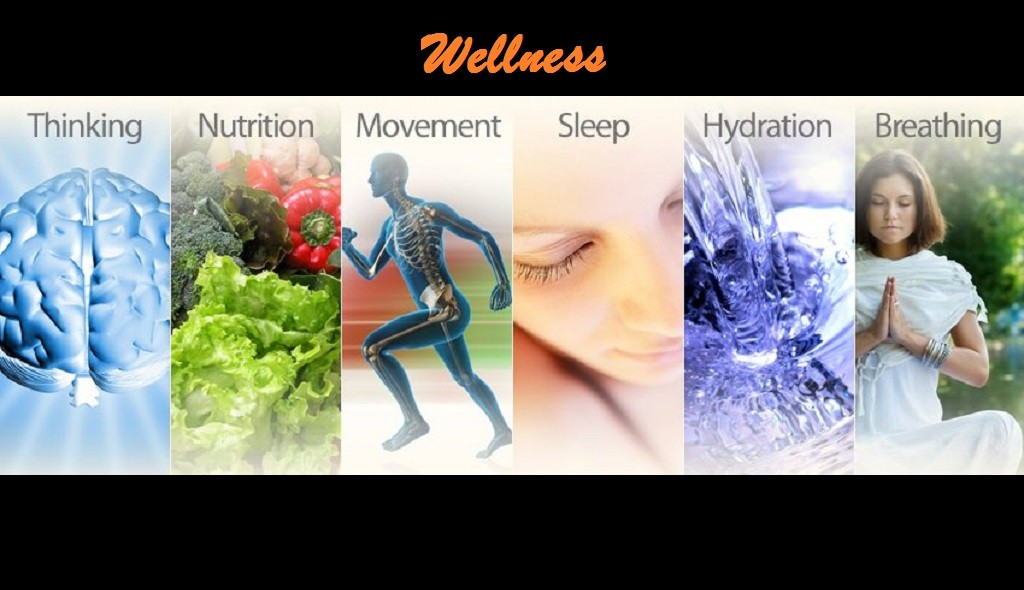 Wellness, Health, Healing, Chiropractic, Wichita Ks, Water, Breathing, Nutrition, Exercise, Sprituality, Philosophy, Hydration, Diet, Movement, Stress